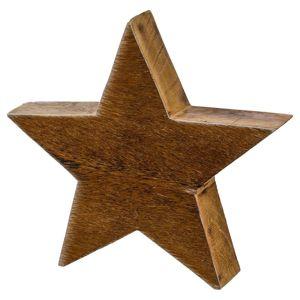 Hvězda Dekorační Alm