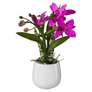 Rostlina Umělá Japonská Orchidej